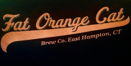 Fat Orange Cat Shirt